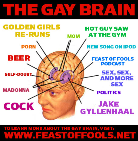 homosexuality in the brain